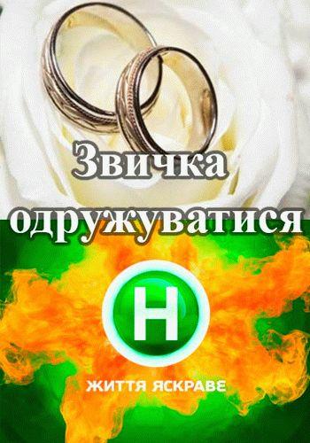 Привычка женится / Выпуск 1-2 (28.08.2015 - 2016) / Новый канал